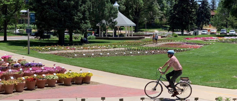 Person biking through the CSU garden