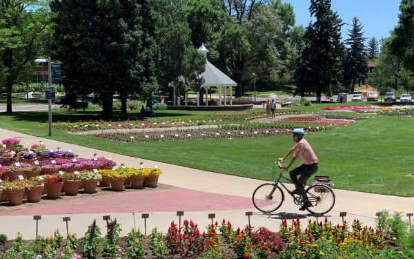Person biking through the CSU garden
